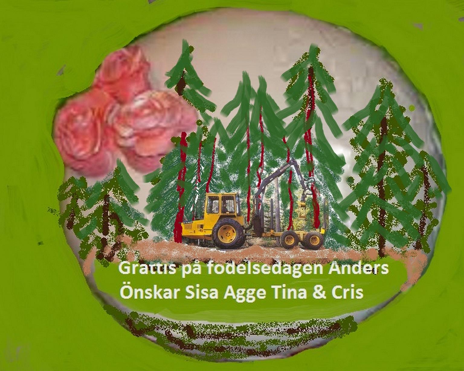 grattis önskningar Grattis på födelsedagen Anders   22 Övrigt   Livskvalitet iFokus grattis önskningar