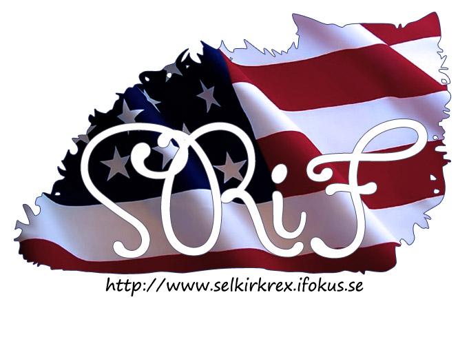 selkirk-rex-ifokus-logo-american-flag.jpg