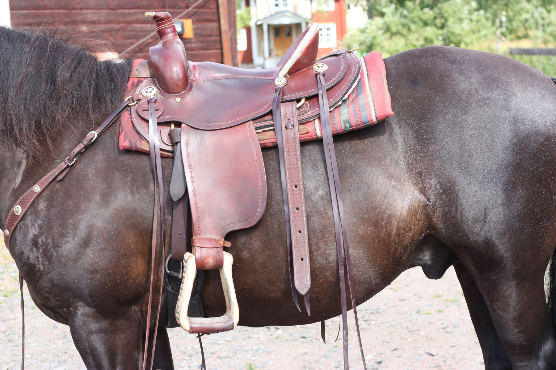 Westernsadel säljes - Utrustning   tillbehör - Ridsport iFokus 5ba17d78c1913