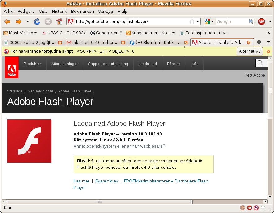 Install flash player windows 10 chrome Install adobe flash