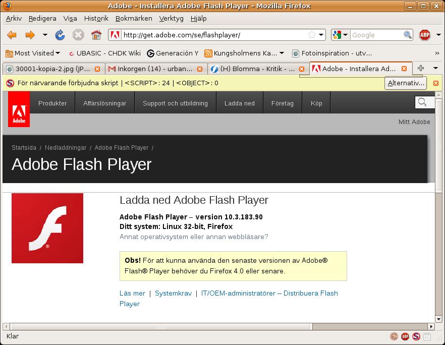 Adobe flash update for mac