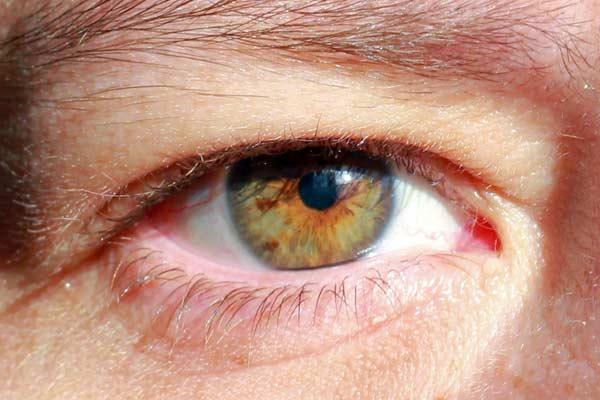 blåa ögon bruna ögon barn