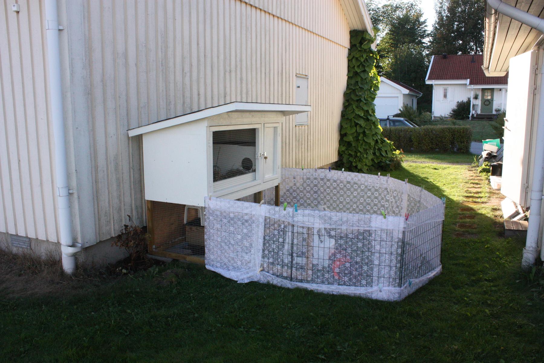 Burbygge   bur och aktivering   kanin ifokus